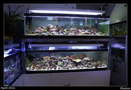 visite d aquatic services oise 60 forum eau de mer